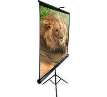 """Tabelë motorike për projektor Elite Screens 100"""" (4: 3)"""